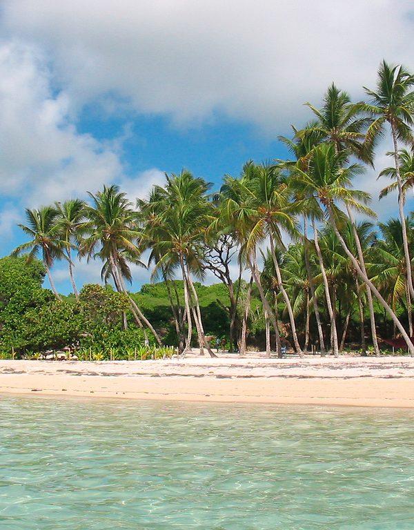 Levné letenky na Martinik