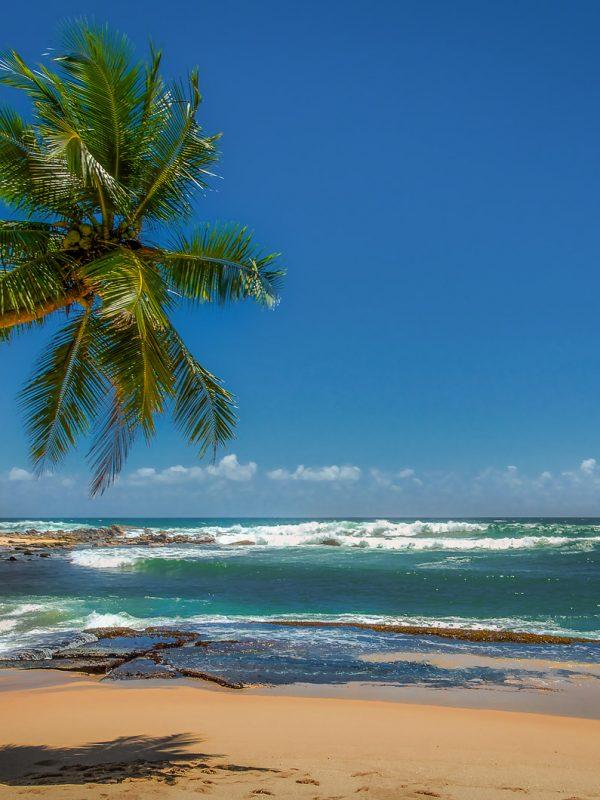 Letenky na Srí Lanku - 9 654 Kč