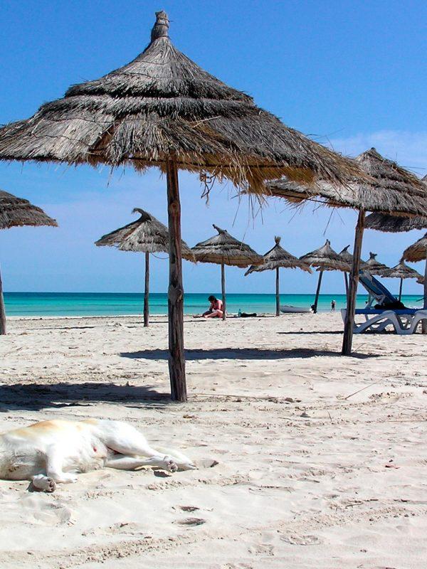 Počasí v Tunisku