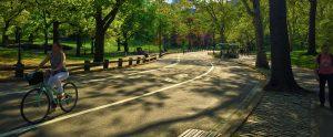 Český průvodce New York