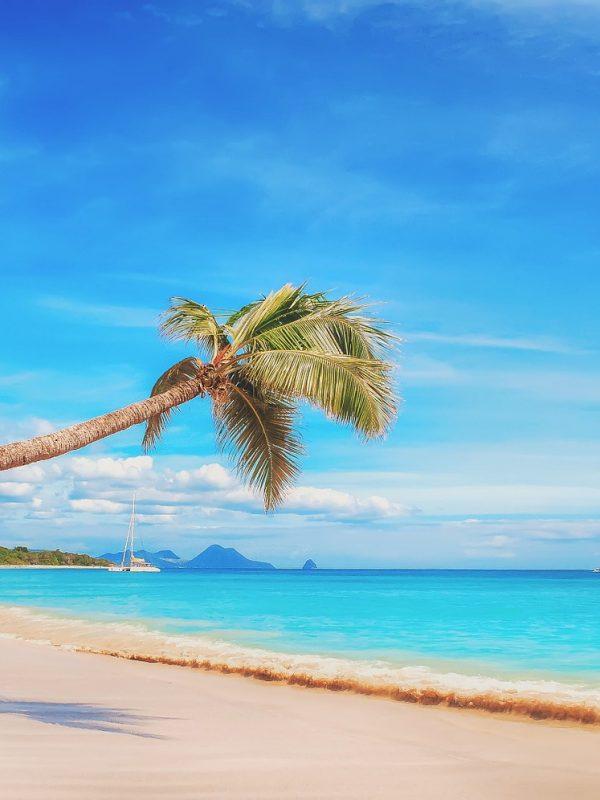 Letenky do Karibiku - Guadeloupe a Martinik za 9 990 Kč