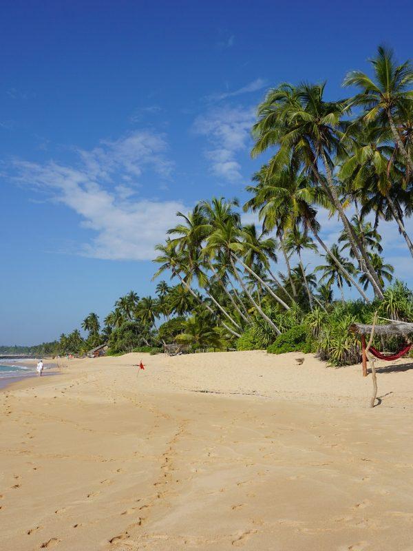 Letenky na Srí Lanku za akčních 12 890 Kč